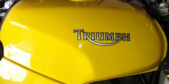 Triumph Decal 2 colour